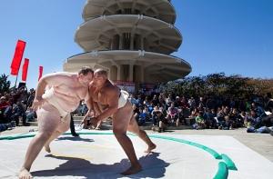 Byambajav Ulambayar Sumo Wrestler