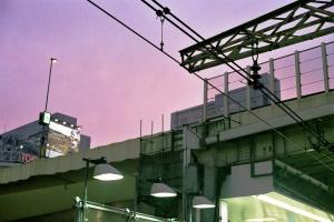 Shibuya Nights: Pitari Streams